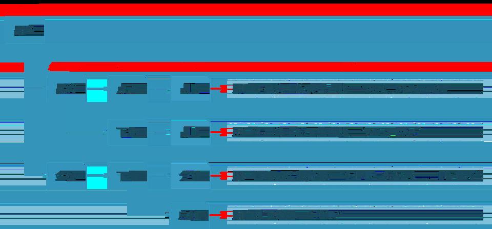 图4 特征统计范式示例